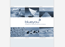 Blueyou AG preview
